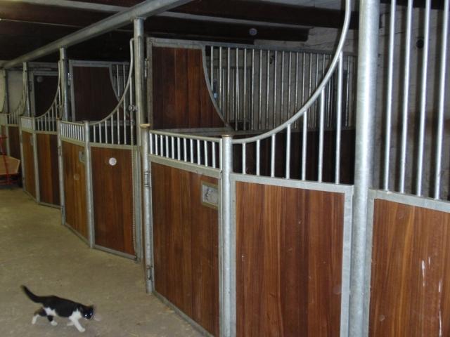 Hesteboks 1